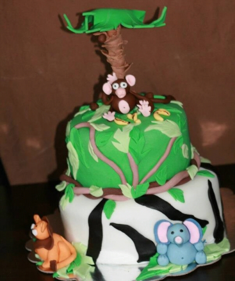 Baby Shower Cake, Jungle punch…and a call-out for photos?