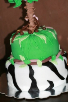 Back view of Cake